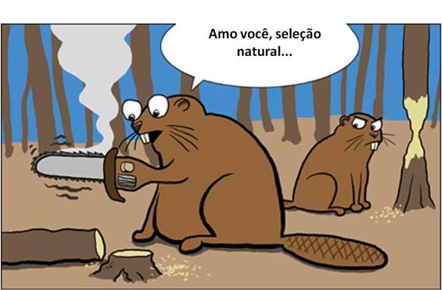 selecao_natural_3