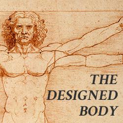 the-designed-body4