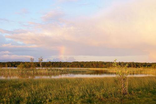 Järise_järv_Saaremaal.jpg